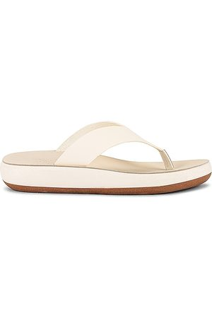 Ancient Greek Sandals Charys Sandal in Ivory. - size 36 (also in 37, 38, 39, 40)