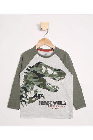 Universal Menino Camisolas de Manga Larga - Camiseta Infantil Raglan Jurassic World Manga Longa Gola Careca Mescla Claro