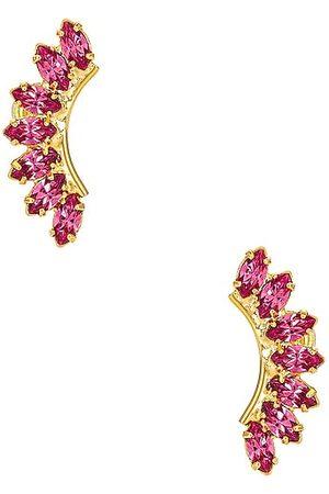 ELIZABETH COLE Rhett Earrings in .