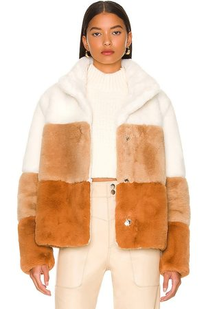 Soia & Kyo Bea C Jacket in Tan. - size L (also in M, S, XS)